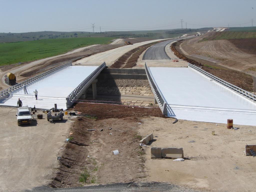 Bridge Israel[1]